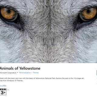 微軟推出 Win10 免費自然與動物桌布包(黃石公園 / 亞馬遜森林) @3C 達人廖阿輝
